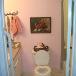 Howard Chermak – Elderly Parents Bathroom Remodel